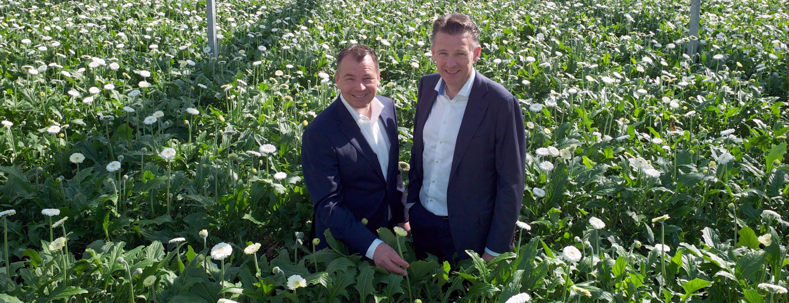 Over ons - Erik Goesten - Matthieu Opdam - Goesten en Opdam